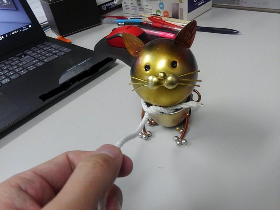 猫カフェ 旭川 グリーン造園